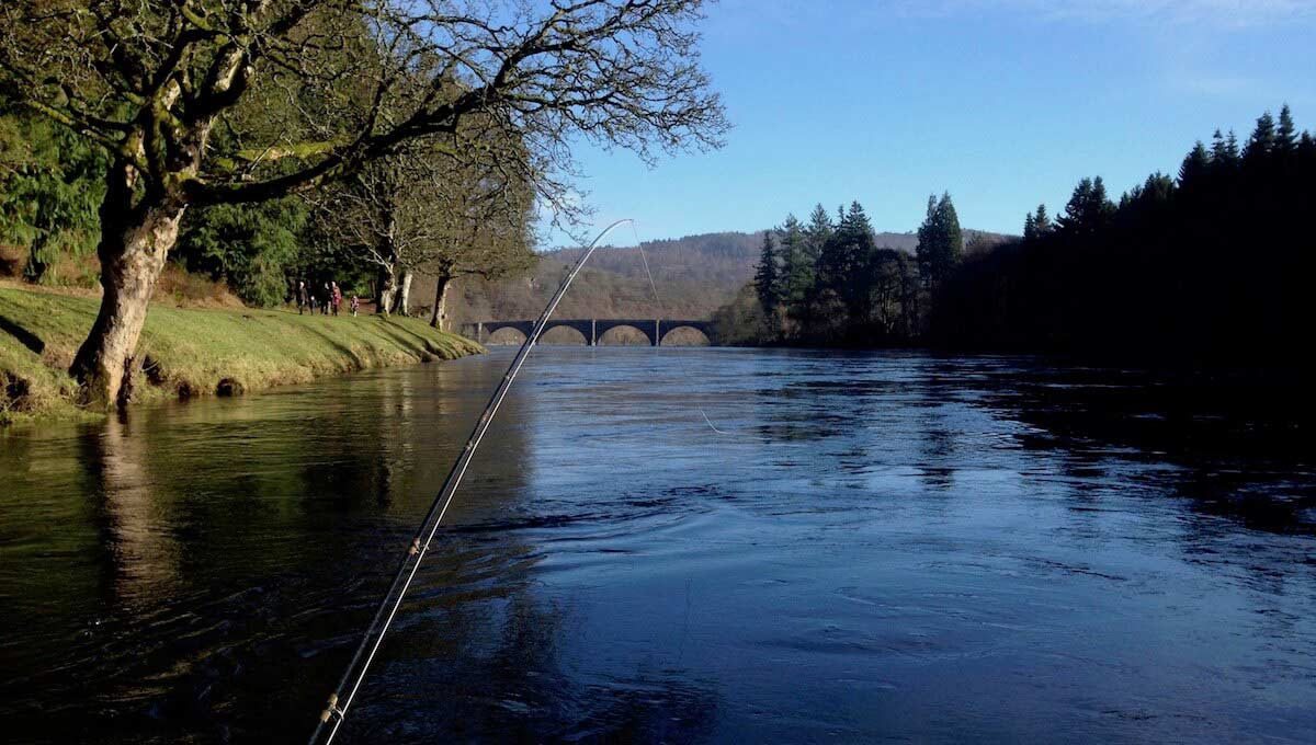 SPRING SALMON FISHING IN CENTRAL SCOTLAND