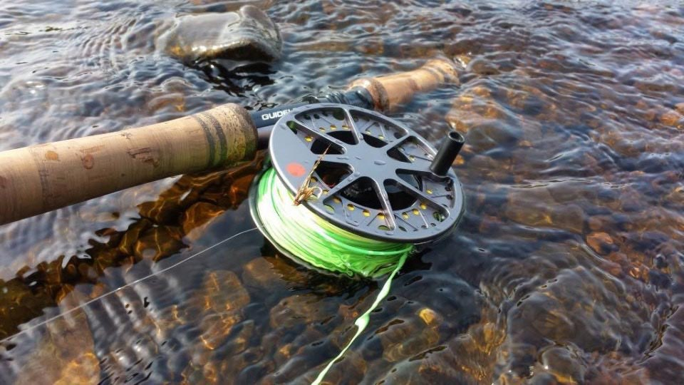 salmon fishing reel