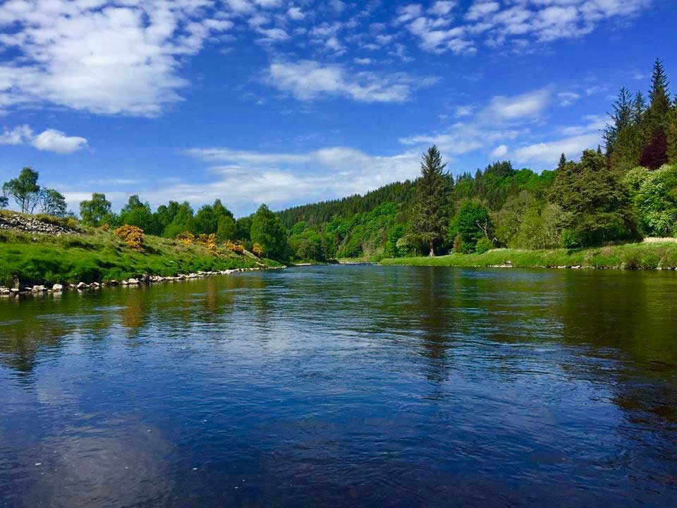 salmon pool river spey