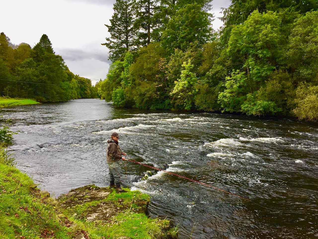 river teith salmon fishing