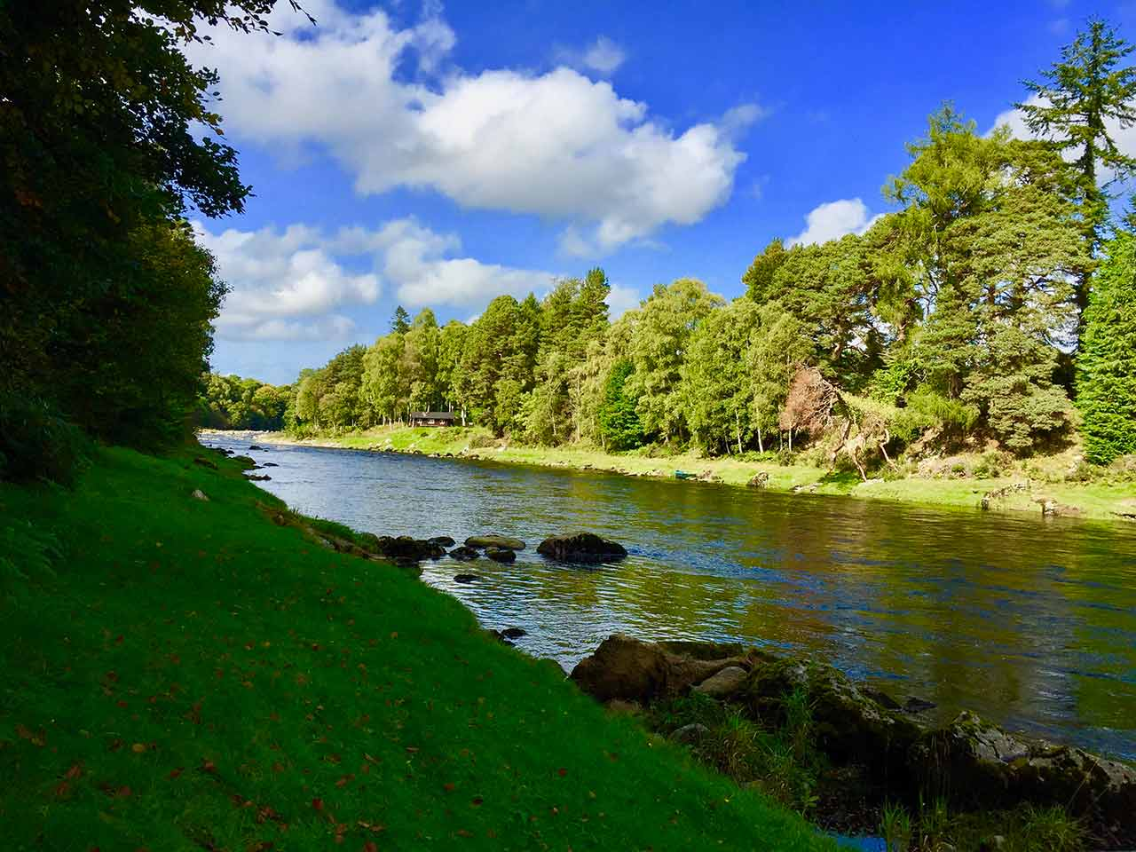 river dee fishing beat