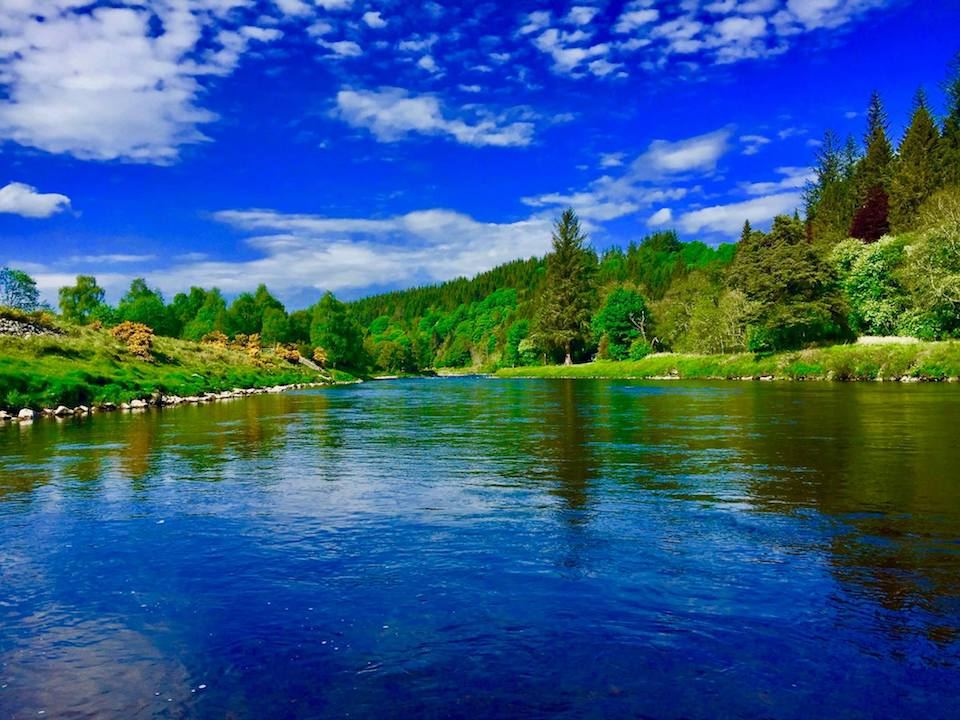 SPRING SALMON FISHING IN THE HIGHLANDS